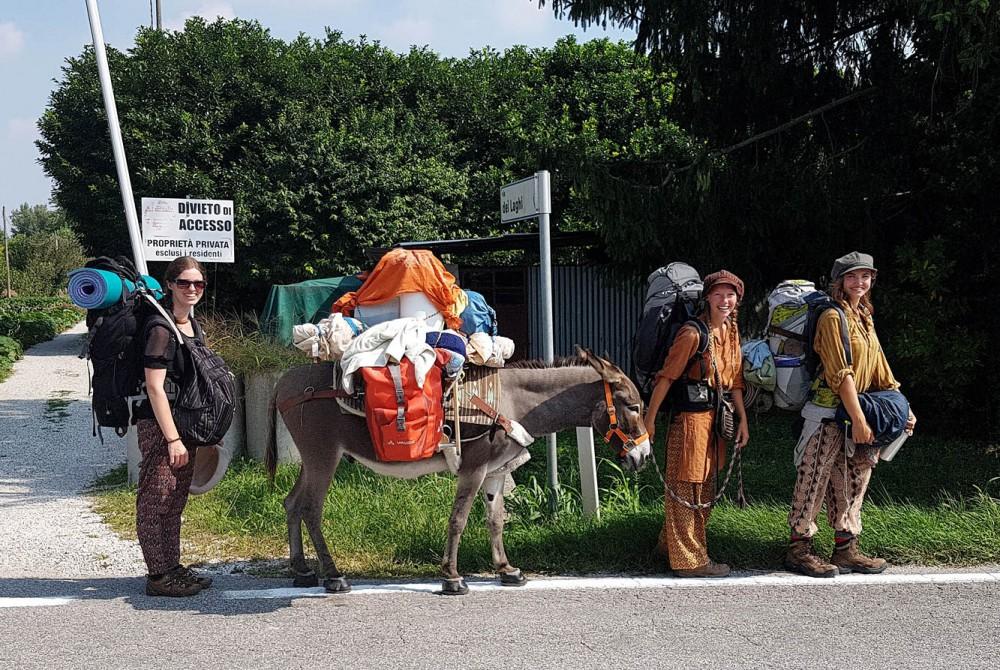 Traum und Abenteuer - Kanada & Alaska - Sehnsucht Wildnis - Mario Goldstein - Sonntag, 25.02.2018 - Stuttgart - Linden-Museum